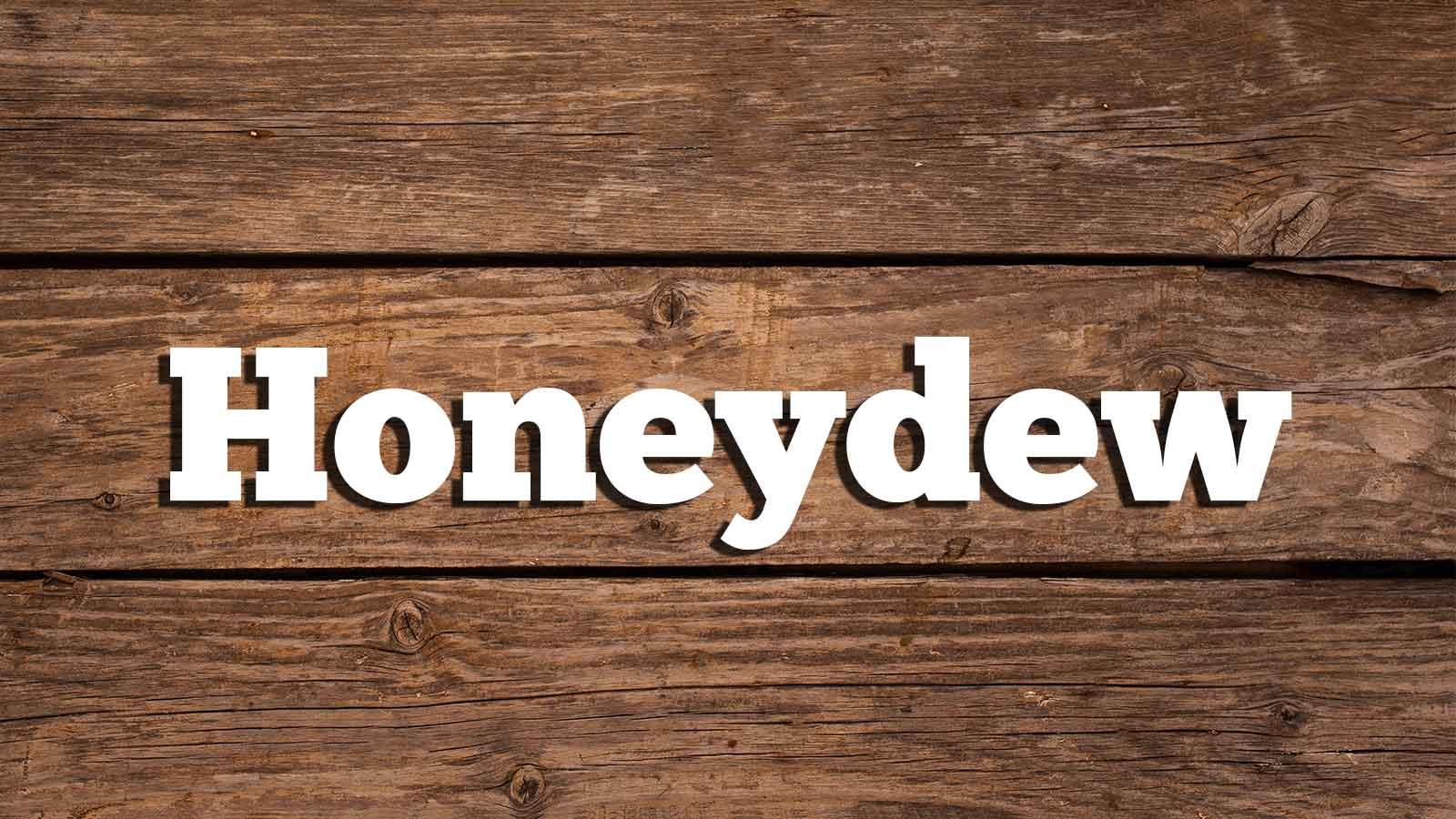 Image for Honey Dew