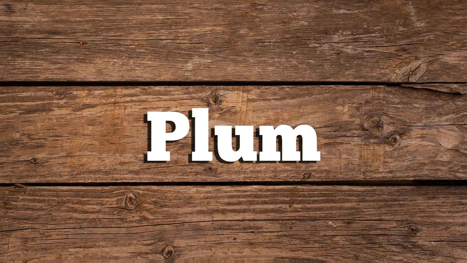 Image for Plum