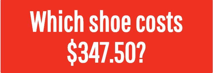 Image for Which shoe costs $347.50?