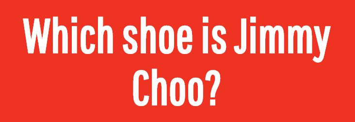 Image for Which shoe is Jimmy Choo?