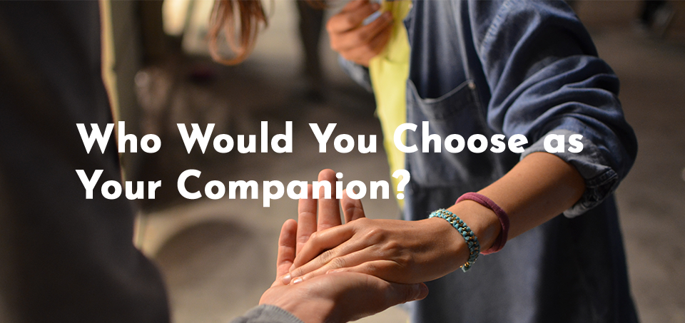 Image for Who would you choose as your companion?