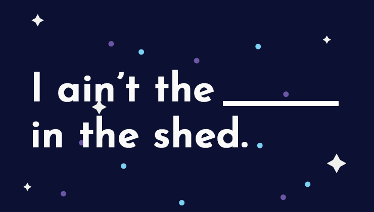 Image for I ain't the ______ in the shed.
